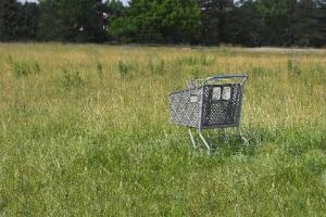 Cart in Field